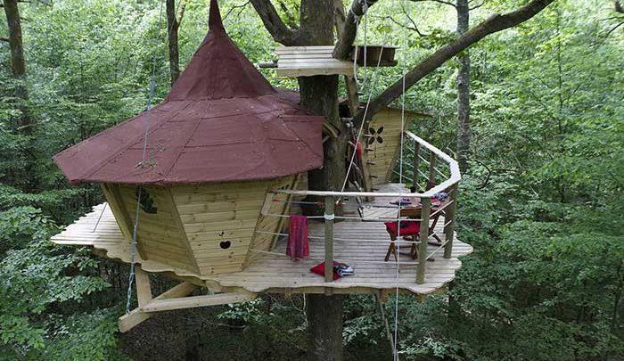 هتل هایی ویژه برای توریست ها؛خانه های درختی!، تصاویر