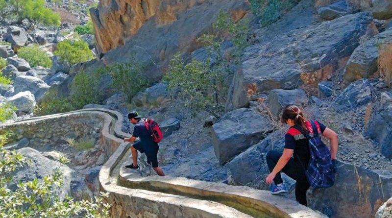 شگفتی گرانش در سیستم های آبیاری افلاج عمان