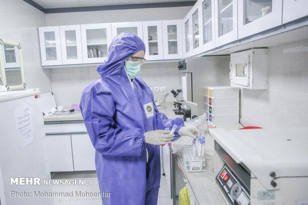 موفقیت یک ترکیب دارویی برای بهبود سریع بیماران کرونایی