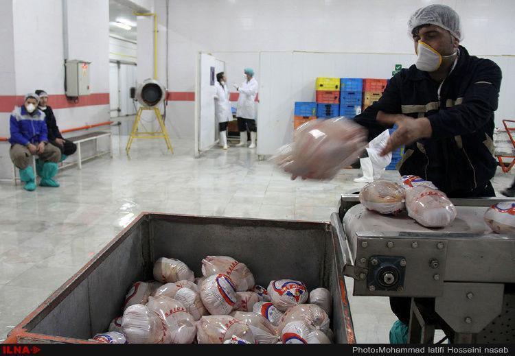 مرغ منجمد به نرخ 13 هزار و 500 تومان تصویب شد