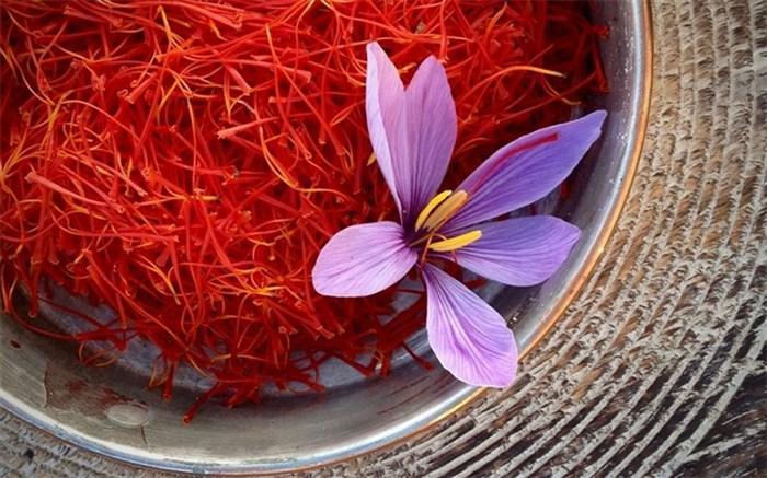صادرکنندگان زعفران 500 میلیارد تومان تسهیلات گرفتند