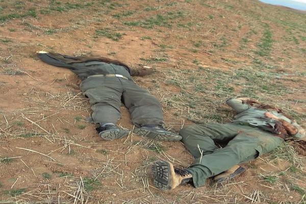 جزئیات شهادت 2 محیط بان با شلیک شکارچیان غیرمجاز